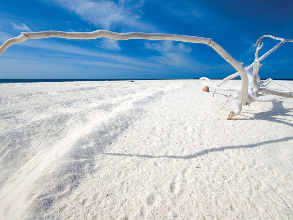 Enjoy swimming in clear, pristine water on some of the most famous white sand beaches all over the world.