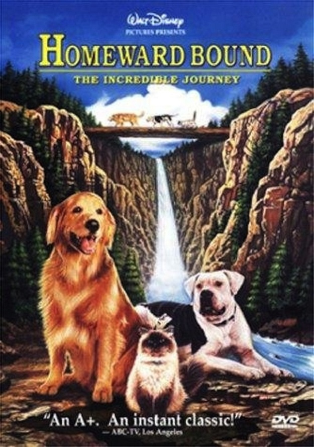 The movie that made you want a pet so, so badly (and also cry so, so much)