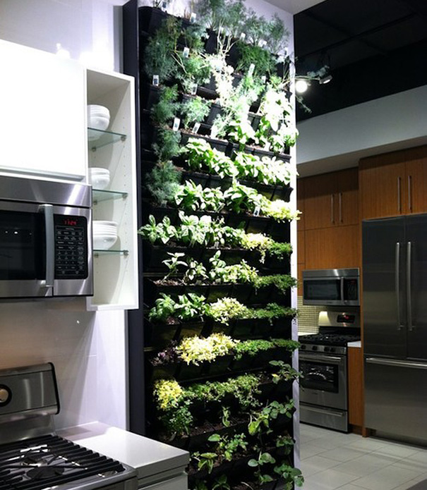 Vertical Herb Garden in the Kitchen