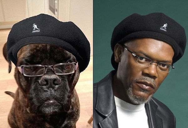 50 funny look alike photos featuring snoop dogg and kim for Snoop dogg fish hat