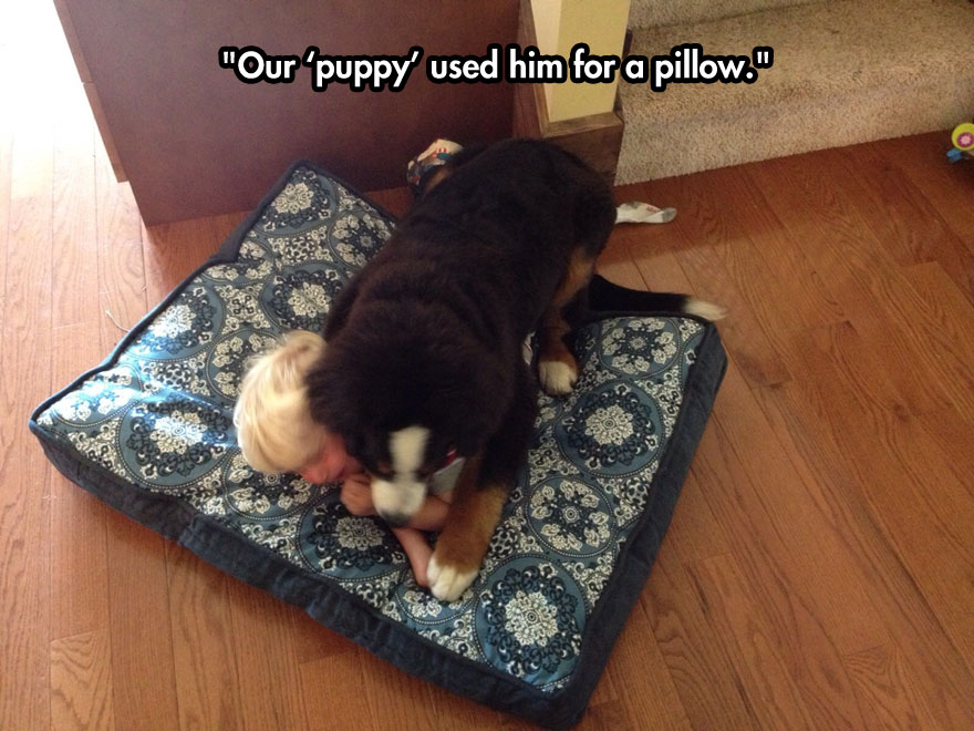 Our puppy used him for a pillow.