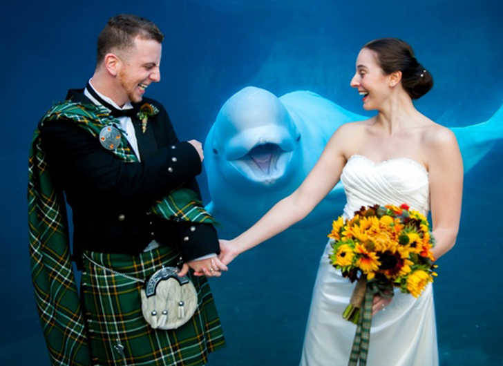 A whale of a good time at this wedding