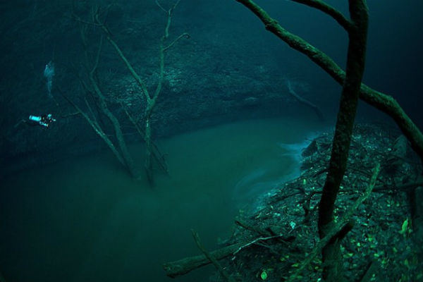 An Underwater River in a Sea