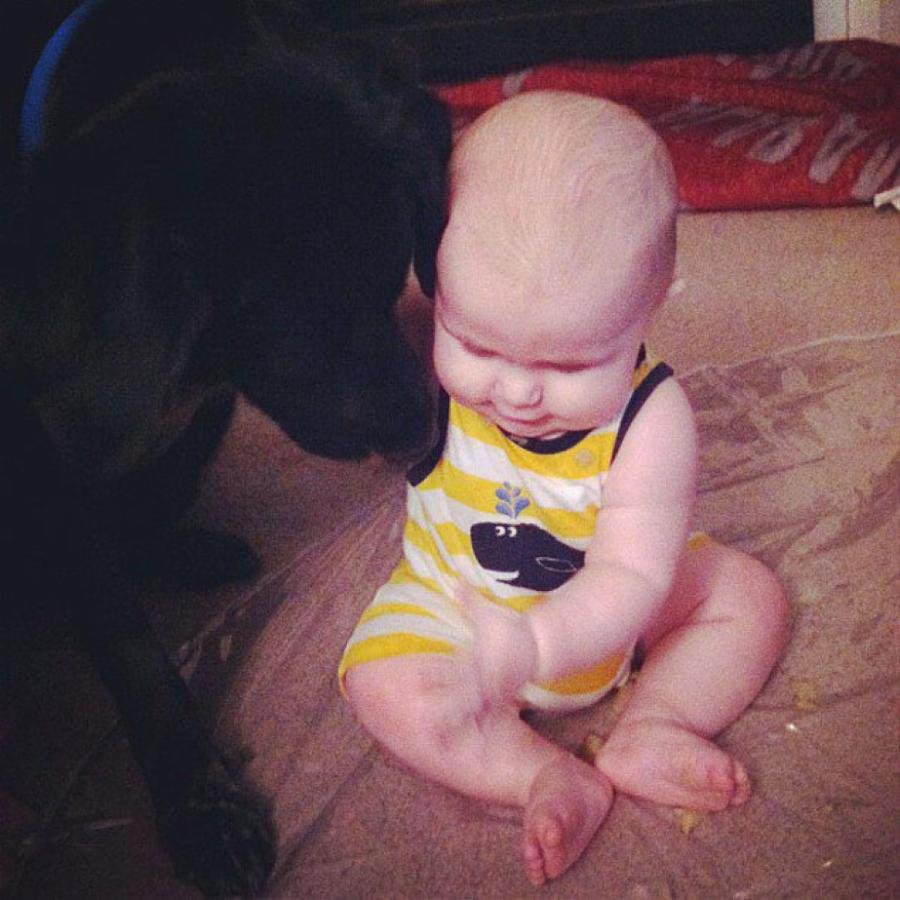 how do you know if your babysitter is a monster  what this dog did said it all
