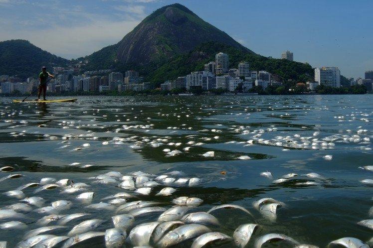 002--11-the-dead-sea-498579