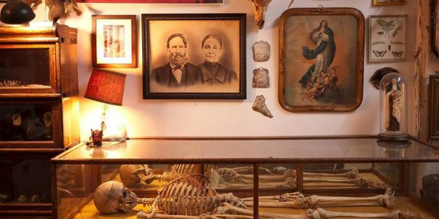 002--14-the-morbid-anatomy-museum-e83168e6596dac0875b529fadee5ce43