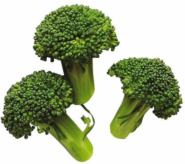 009--4-broccoli-481002