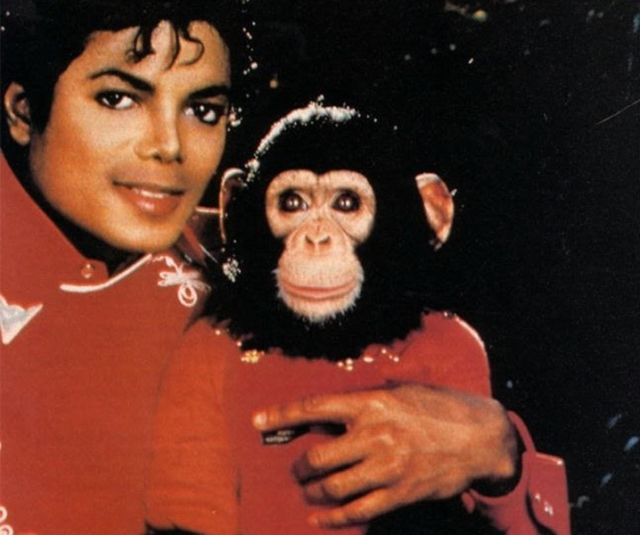 010-3-michael-jackson-bubbles-the-chimpanzee-506944