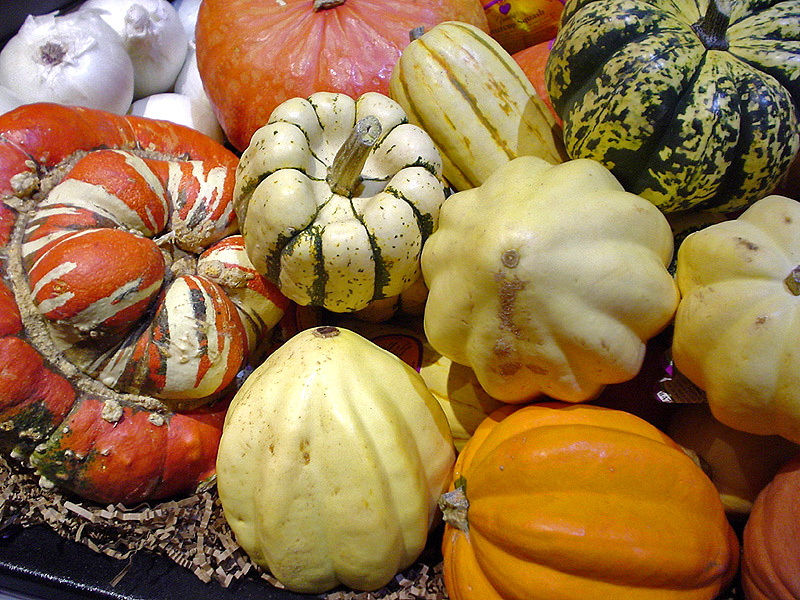 010--6-winter-squashes-446422