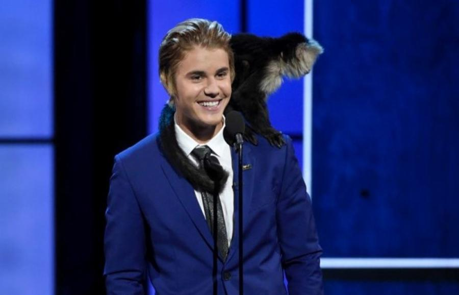 012-1-justin-beiber-mally-the-capuchin-monke-c23d974ea0a831cd2c52fe8a89285b2e