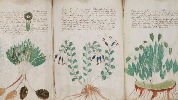 018--1-the-voynich-manuscript-261333