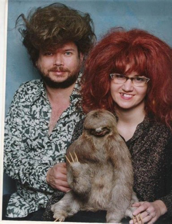 003-10-family-of-sloths-600077