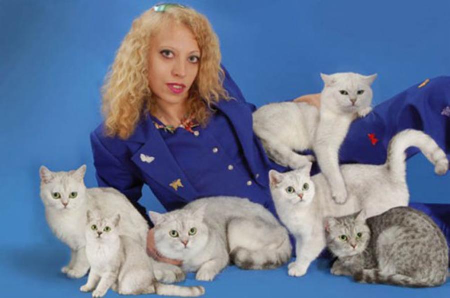 010-3-cat-whisperer--13599a7510bfbd5a7c1f354b5d2174e0