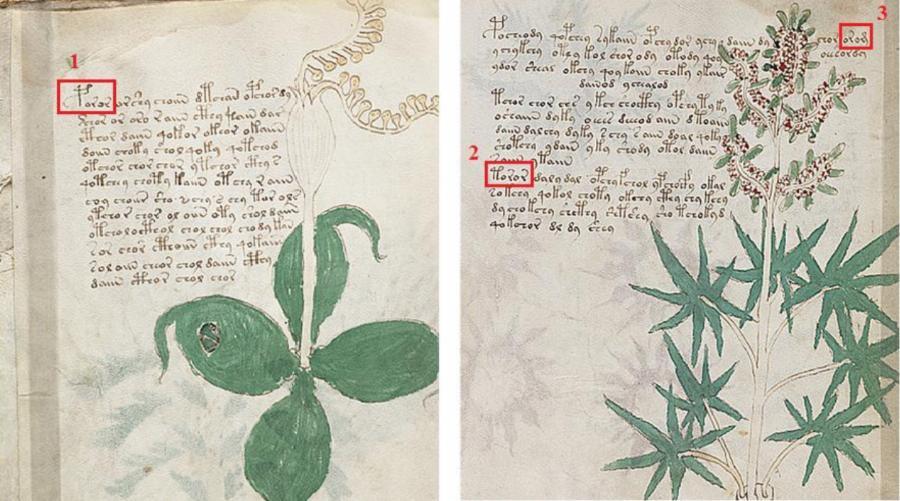 011--2-voynich-manuscript-70a35986d70a6456f97ee003a2c7eed0