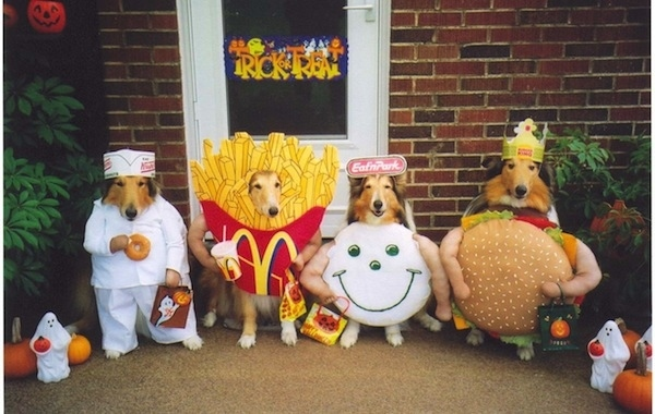 012--1-these-fast-food-dogs-566864