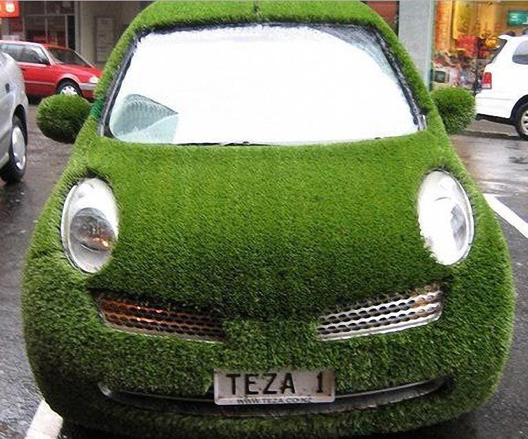 grass car2
