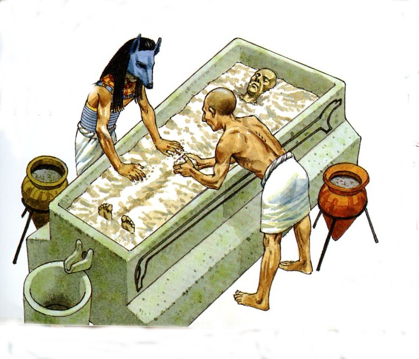 004-11-mummification-and-drying-organs-was-a-790959