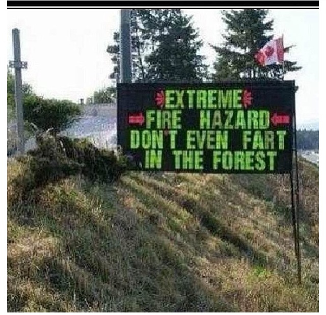 forest-funny-sign