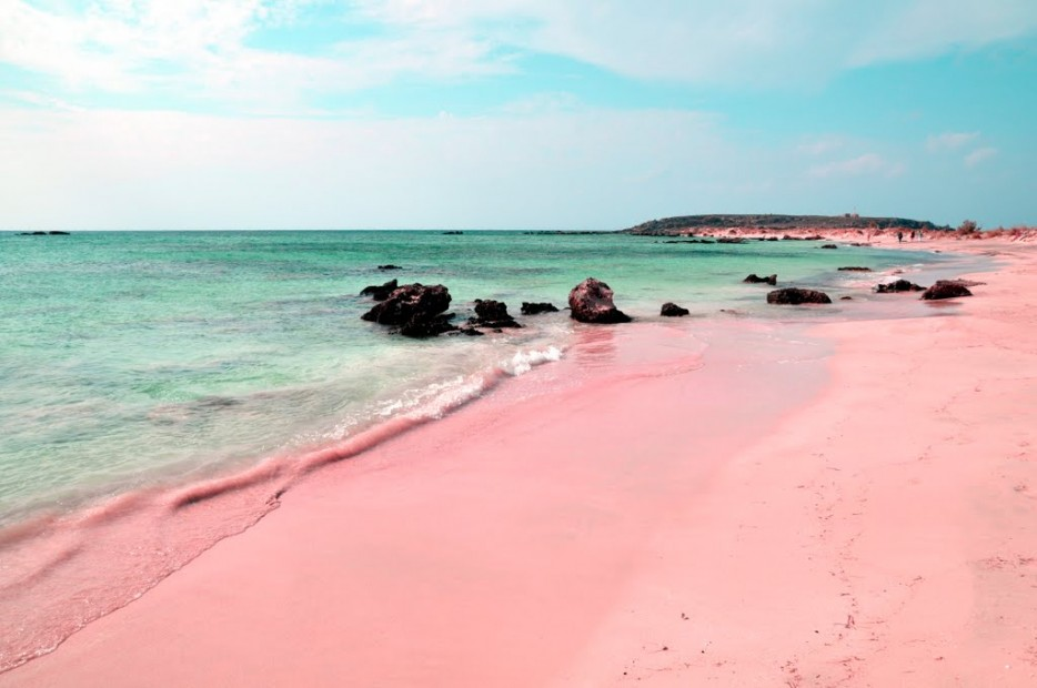 The pink sand comes from the abundance of a special kind of foraminifera that live in tiny reddish-pink shells.