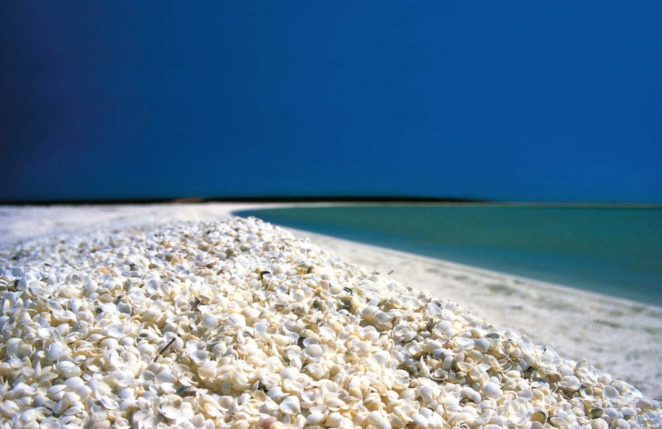 Shell Beach is situated in the Shark Bay region of Western Australia. This popular tourist spot stretches up to 110 kilometers.