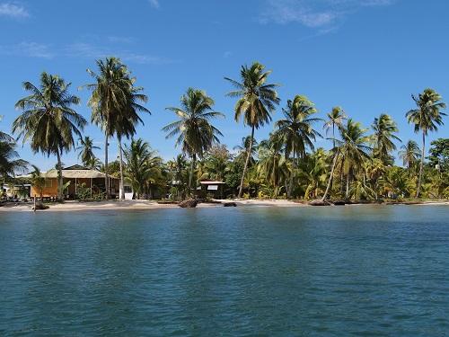 Caribbean houses on a tropical island