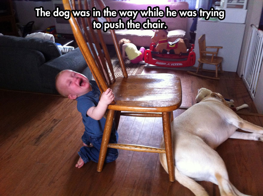 The dog was in the way while he was trying to push the chair.