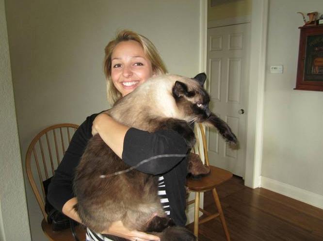 18. Still A Kitten?