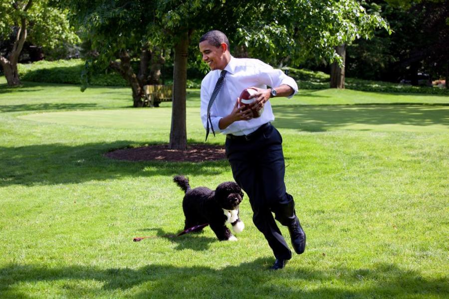 004--15-a-man-and-his-dog-b39515941b35b3defcd5a5e3235c6473