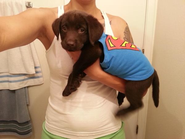 007-6-super-puppy-872813